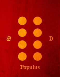 Populus